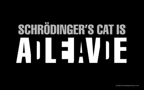 schrodinger's cat is dead - alive